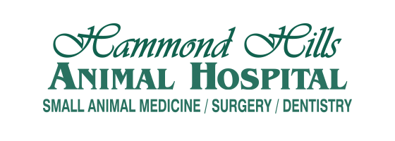 Logo for Veterinarians North Augusta | Hammond Hills Animal Hospital